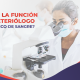 ¿Cuál es la función de un Bacteriólogo en un Banco de Sangre?