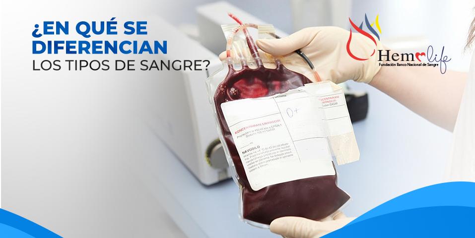¿En qué se diferencian los tipos de sangre?